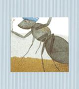 ISBN: 978-84-307-2112-2