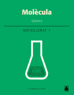 Molecula Quimica 1 Batx.dig. (Cat)(2020)