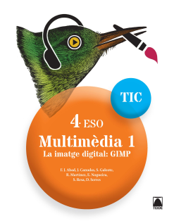 Multimèdia 1.La imatge digital:Gimp 4 ESO(digital)